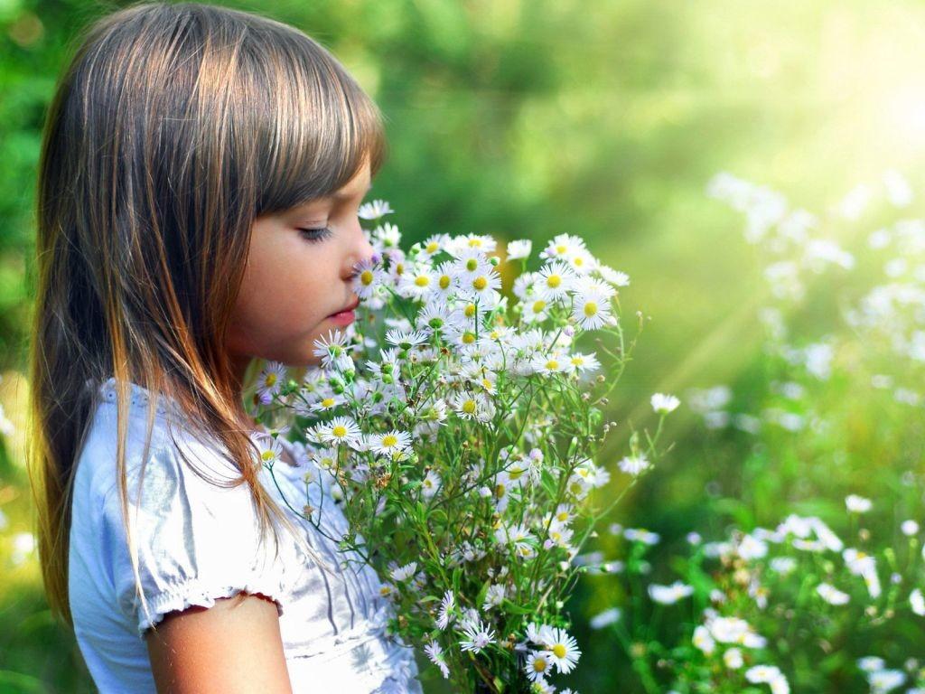 El sentido del olfato depende directamente de la nariz. Gracias a ella podemos diferenciar los olores.