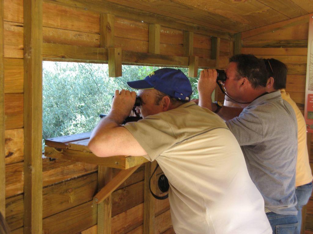La observacion de campo se centra en registrar los componentes del especimen objeto de estudio en su habitat natural, sin alteraciones