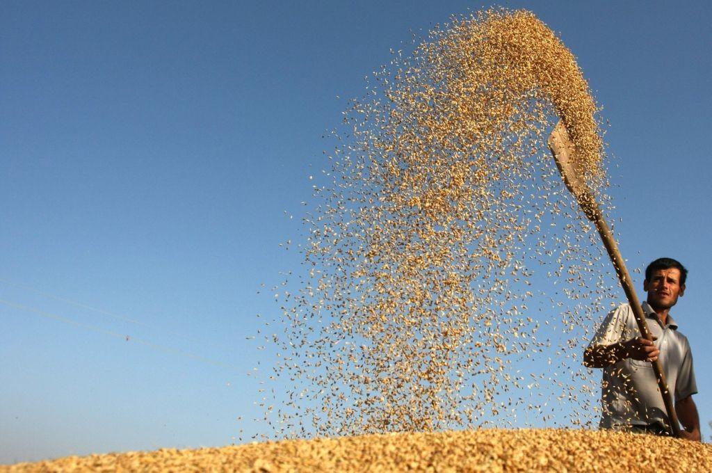 Cinco areas son las principales de la fao, centrandose en la alimentacion, riqueza y prosperidad de todos los paises por igual