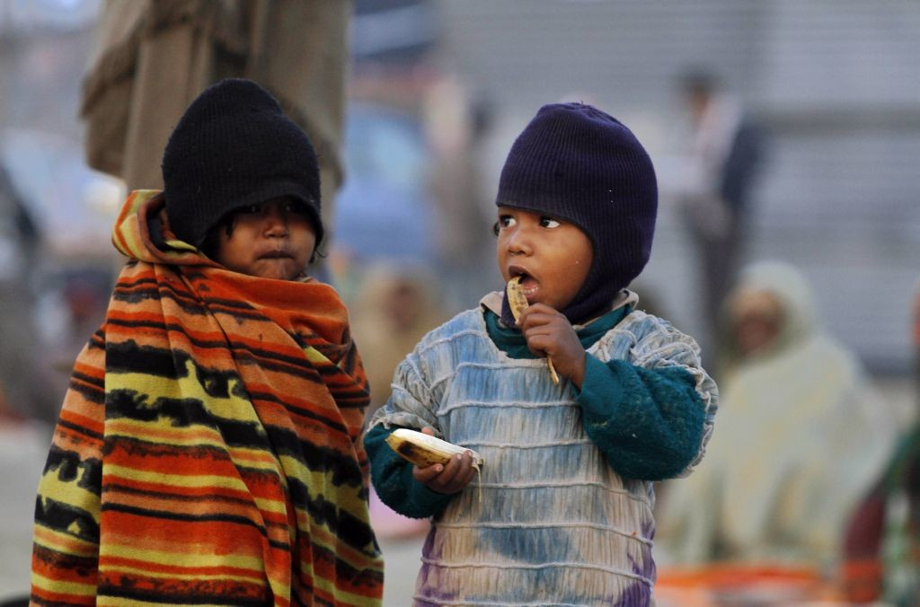 Uno de los objetivos de la fao es acabar con el hambre mundial