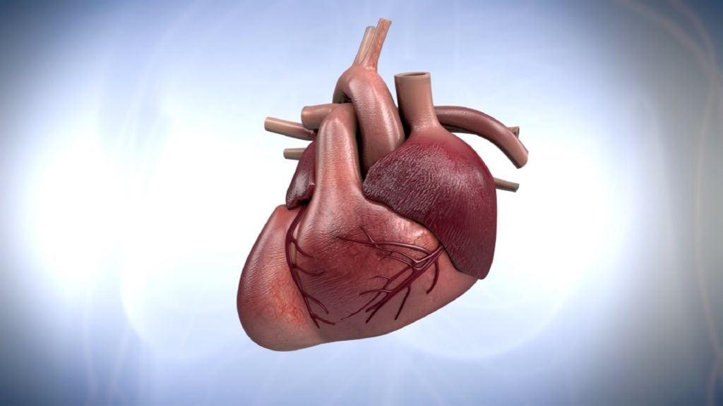 corazon alcohol(1)